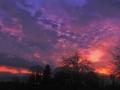 22817 Sunrise 008