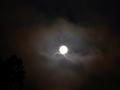 Full Moon 8-10-14 019