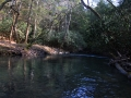 Clear Creek 021