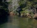 Clear Creek 2-26-14 021-1