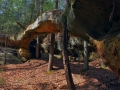 Needle Arch Slave Falls 038
