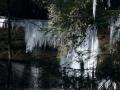 Northup Falls 1-29-14 020