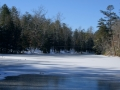 Picket State Park 1-18-14 010