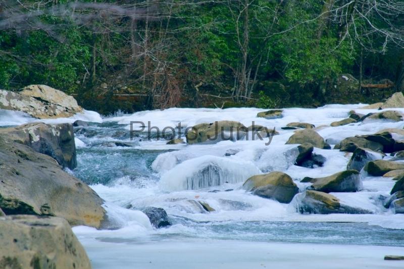 Potters Falls 021