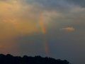Rainbow & Late Evening Sun 008