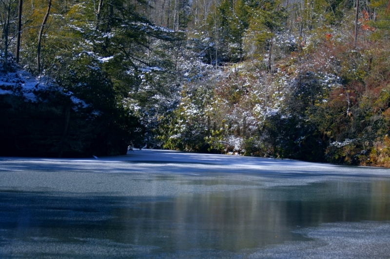 Picket State Park 1-18-14 057